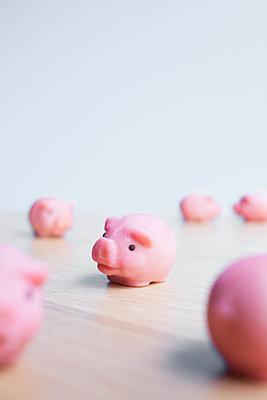 Among pigs - p454m2245340 by Lubitz + Dorner