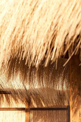 Bastdächer - p781m881277 von Angela Franke