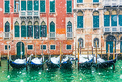 Venice, Veneto, Italy. Snowfall over moored gondolas along the Grand Canal (Canal Grande). - p651m2033997 by Marco Bottigelli