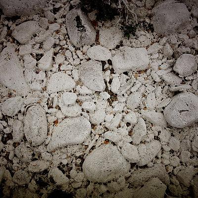 Stones - p1105m2291254 by Virginie Plauchut