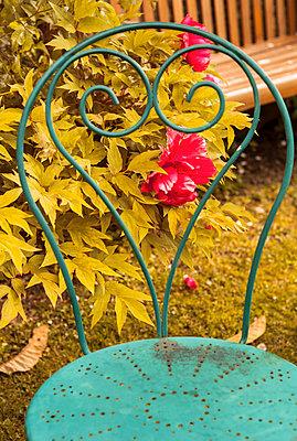 Fleur - p567m1515815 by Alexis Bastin