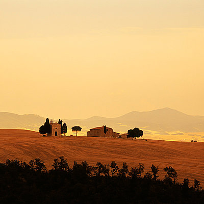 Tuscany - p844m815100 by Markus Renner
