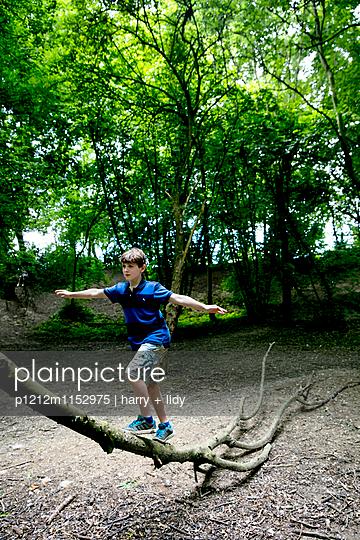 Junge klettert auf einem großen Ast - p1212m1152975 von harry + lidy
