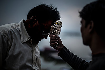 Strange ceremony with owl touching forehead - p1007m1144303 by Tilby Vattard