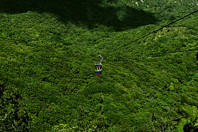 Cable car over the jungle - p1041m2090466 by Franckaparis
