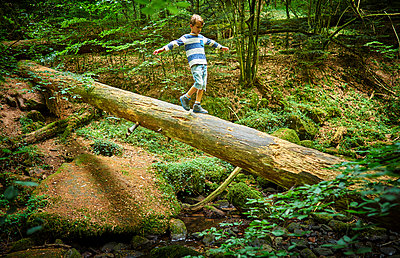 Little girl balancing on tree trunk in the woods - p300m1469998 by Dirk Kittelberger