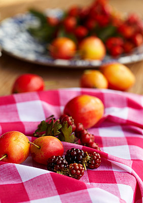 Red and white gingham cloth with Victoria Plums and blackberries - p349m2167893 by Sussie Bell