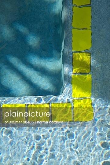 Pool - p1339m1198485 von norma cordova