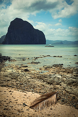 Beach in Philippine - p880m912198 by Claudia Below