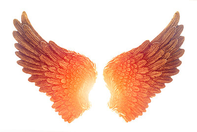 Angel Wings - p1280m1462409 by Dave Wall
