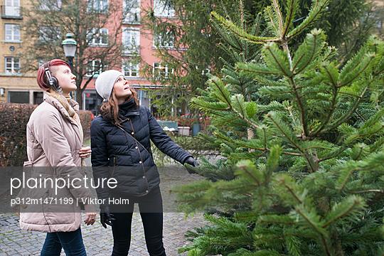 p312m1471199 von Viktor Holm