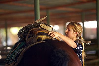 Teenage girl saddling horse - p1260m1111316 by Ted Catanzaro