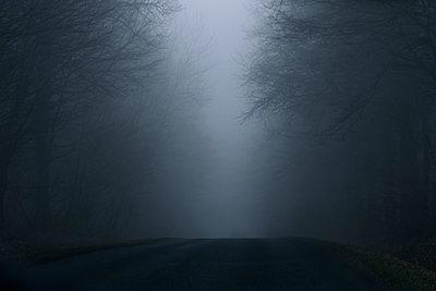 Mist - p1375m1476707 by Alyz Tale