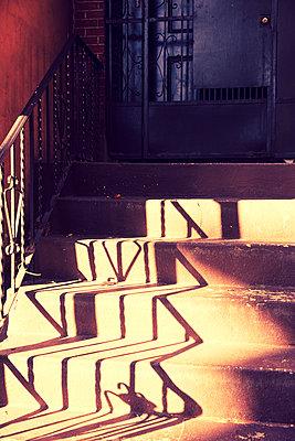 Treppenstufen in Brooklyn - p432m1185609 von mia takahara
