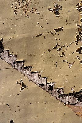 Staircase-Shaped - p813m767382 by B.Jaubert