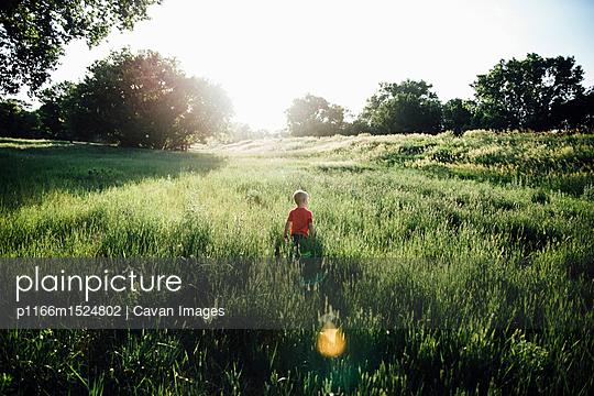 p1166m1524802 von Cavan Images