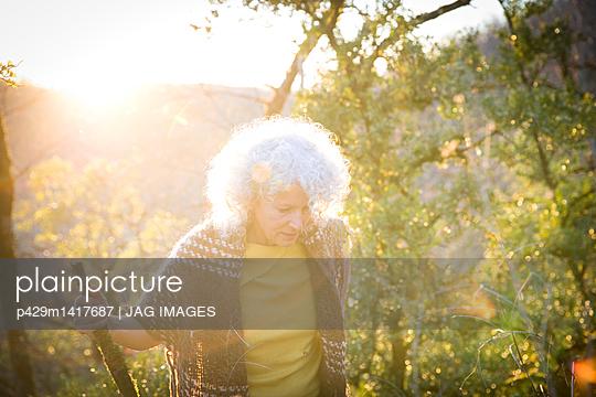p429m1417687 von JAG IMAGES