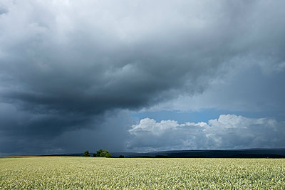 Germany, Constance district, stormy atmosphere over Black Forest - p300m980597f by Markus Keller