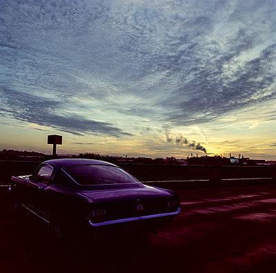Mustang  - p1082m2193368 von Daniel Allan