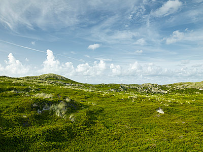 Sylt - p1200m1143670 by Carsten Goerling