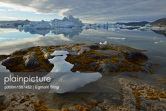 Greenland, East Greenland, view from Sarpaq over the icebergs of Sermilik fjord - p300m1587452 von Egmont Strigl
