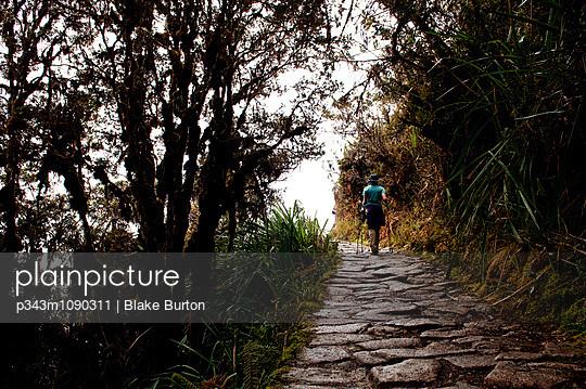 p343m1090311 von Blake Burton