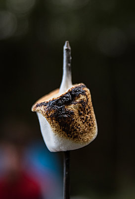 Close up of a hot roasted marshmallow melting on a metal stick. - p1166m2214649 by Cavan Images