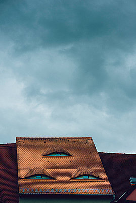 Eyes on a roof - p1088m1034547 by Martin Benner