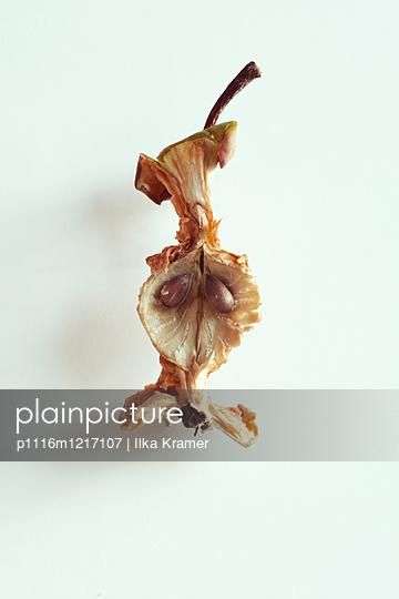 Apfelbutzen - p1116m1217107 von Ilka Kramer