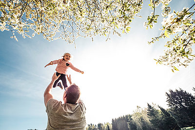 Father throwing little daughter in air - p300m2167619 by Wilfried Feder