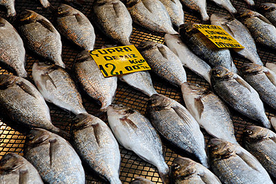 Fish in market - p388m701887 by Jeffries