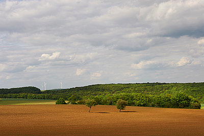Forest and tilled field under cloudy sky - p763m1160158 by co-o-peration