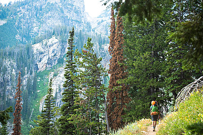 A hiker on his way up the Teton Mountains. - p343m1184702 by Rob Hammer