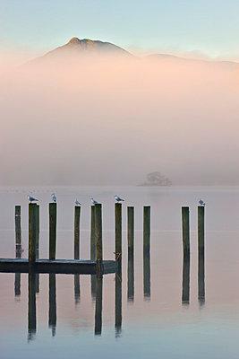 Derwent Water jetty on a misty autumn morning, Keswick, Lake District National Park, Cumbria, England, United Kingdom, Europe - p8713038 by Adam Burton