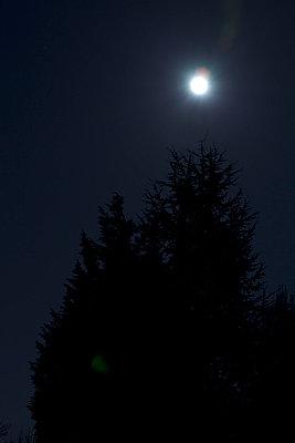 Nachts - p1051277 von André Schuster