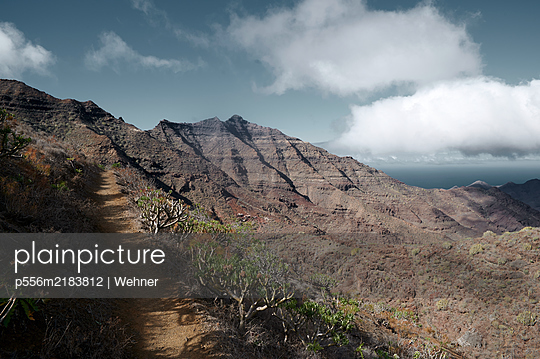 Mountain range, view of path with gnarled trees, Gran Canaria - p556m2183812 by Wehner