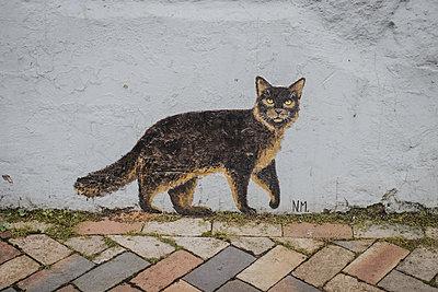 Katze an der Hausfassade - p858m2217713 von Lucja Romanowska