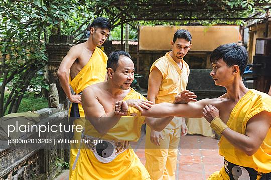 Vietnam, Hanoi, men exercising kung fu - p300m2013203 von William Perugini
