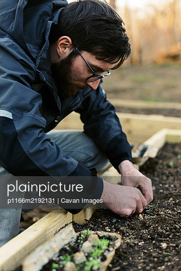 A man planting seedlings in early spring. - p1166m2192131 by Cavan Images