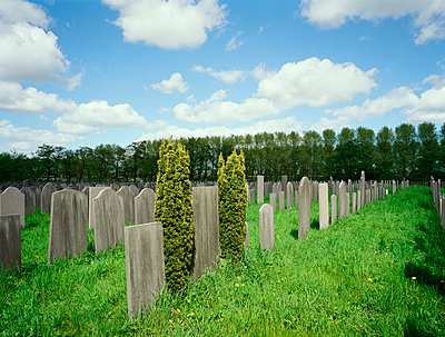Jewish cemetery - p1132m925590 by Mischa Keijser