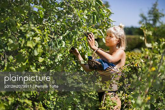 p312m2079911 von Pernille Tofte
