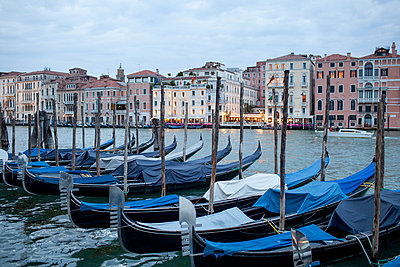 Grand Canal with Gondolas - p1059m918684 by Philipp Reiss
