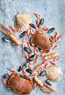 Seafood against grey background - p312m1558295 by Johner