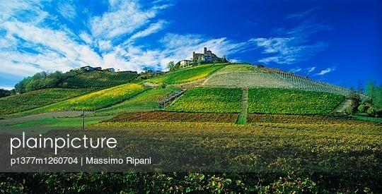 p1377m1260704 von Massimo Ripani