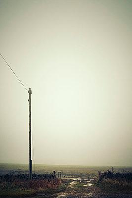 Telephone pole next to a gate into a misty field. - p1302m2231244 by Richard Nixon