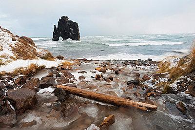 Hvitserkur rock formation, Vatnsnes peninsular - p871m821251 by Christian Kober