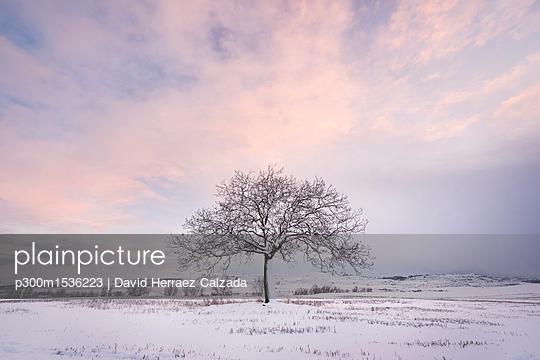 p300m1536223 von David Herraez Calzada