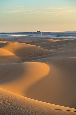 Sunset in the giant sand dunes of the Sahara Desert, Timimoun, western Algeria, North Africa - p871m2101226 by Michael Runkel