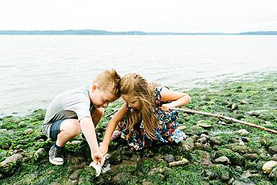 Siblings searching seashells while crouching on rocks at beach against clear sky - p1166m2025788 by Cavan Images