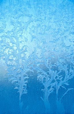 Eiskristalle - p9791322 von Opelka
